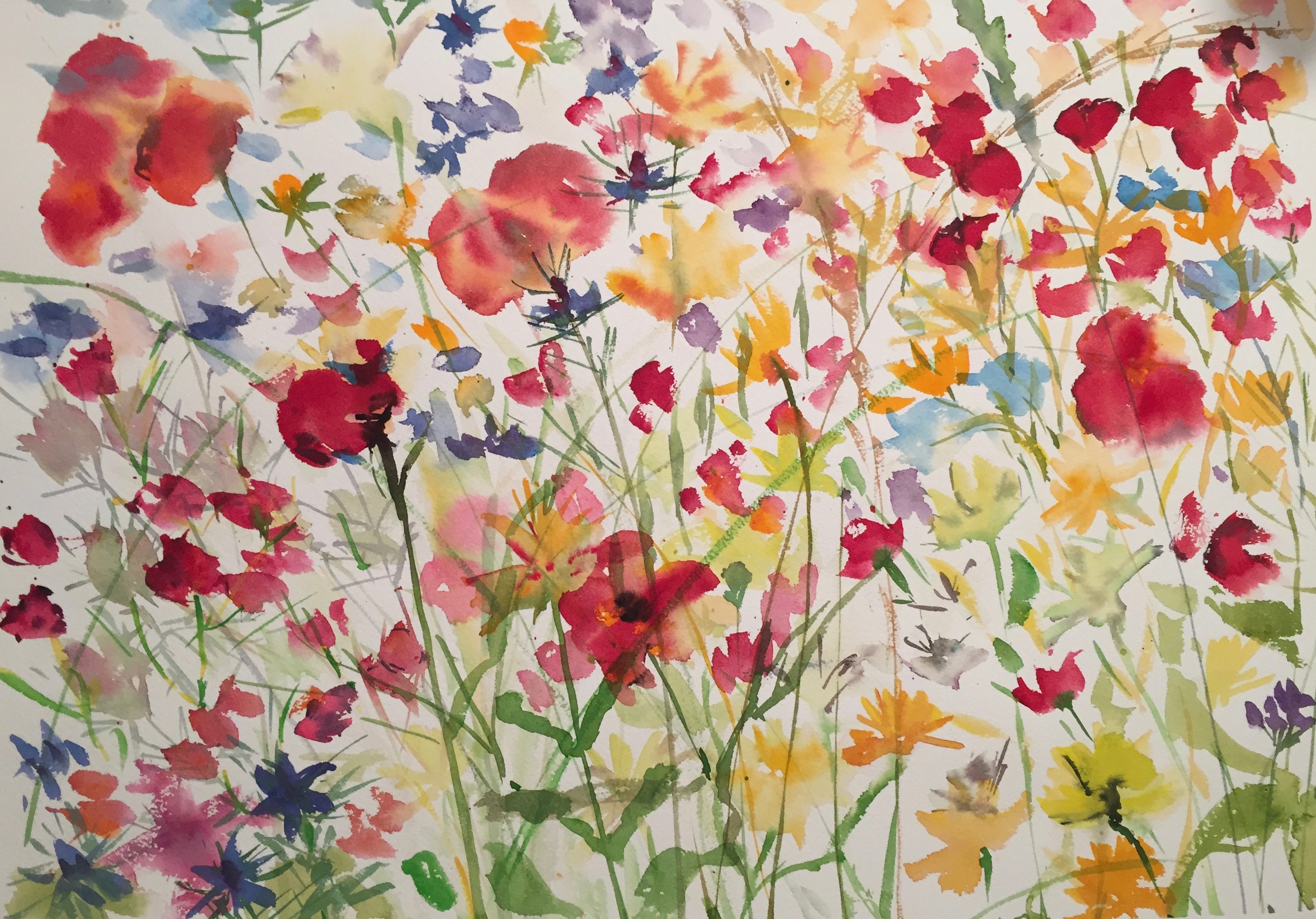 In My Garden Painting The Wildflower Meadow Chatting To My Friend. Alison About  Paint Provence With Tess