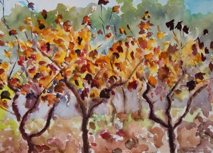 paint-provence-with-tess_lorgues-vineyards-2