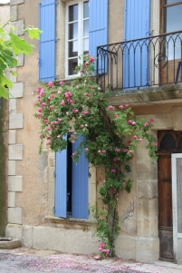 Blue shutters in Tuilieres