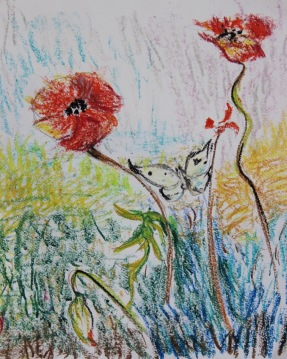 oil pastel poppies by Chris