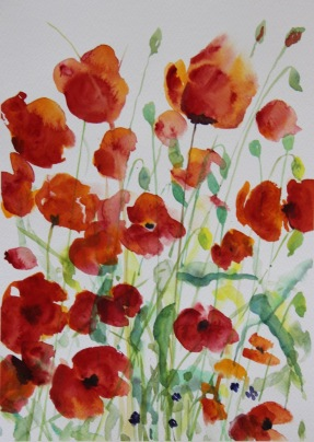 poppies by Tess
