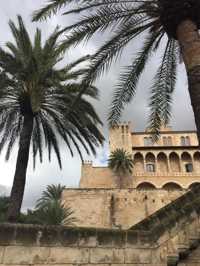 Cathedral Palma de Mallorca and Palm Trees