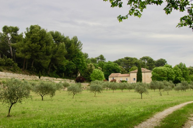 our house in Provence through the olive groves